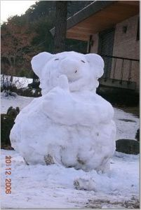 snowpig